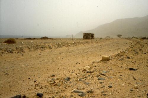 Camminando nel deserto del Sinai - Sullo sfondo il mar Rosso