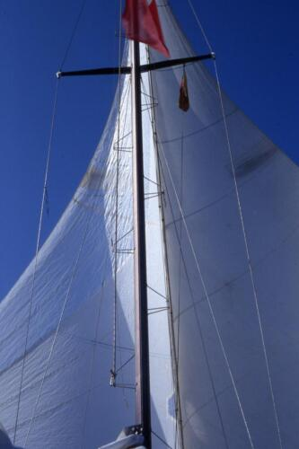 trinchette-gemelle-alpa-21
