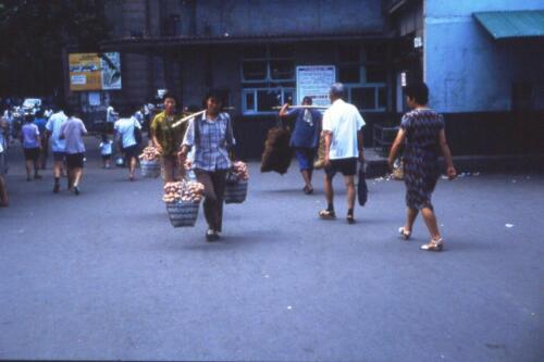 028 trasporto delle uova 20 anni fa