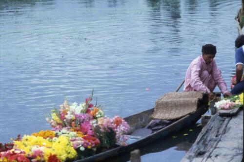 Riposo al lago Dhal