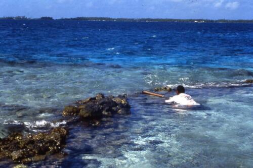 -Caccia-subacuea-a-Takaroa